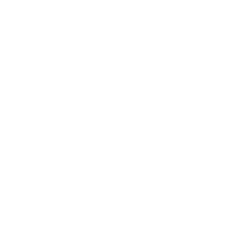 Consolini Volley Maschile